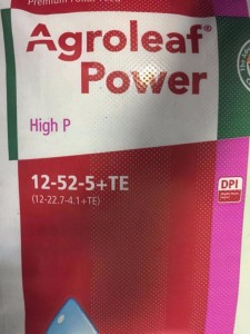 AGROLEAF POWER HIGH P 15KG